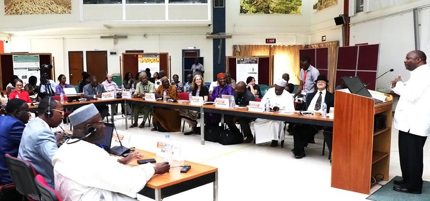 DG Sanginga addressing participants at the workshop.
