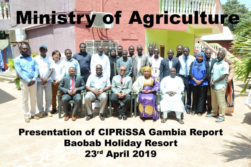 Launch of CIPRiSSA-Gambia report - CGIAR