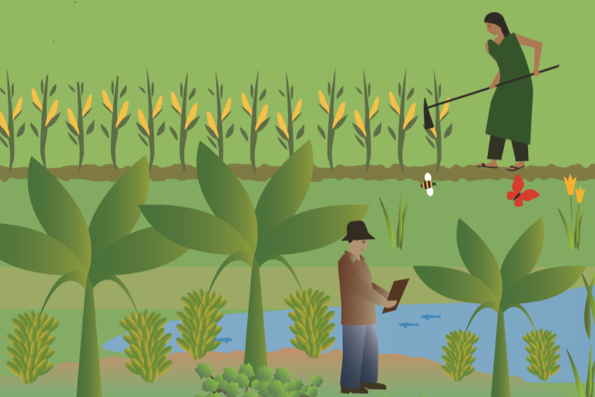 Five ways food systems can make or break our Earth - CGIAR