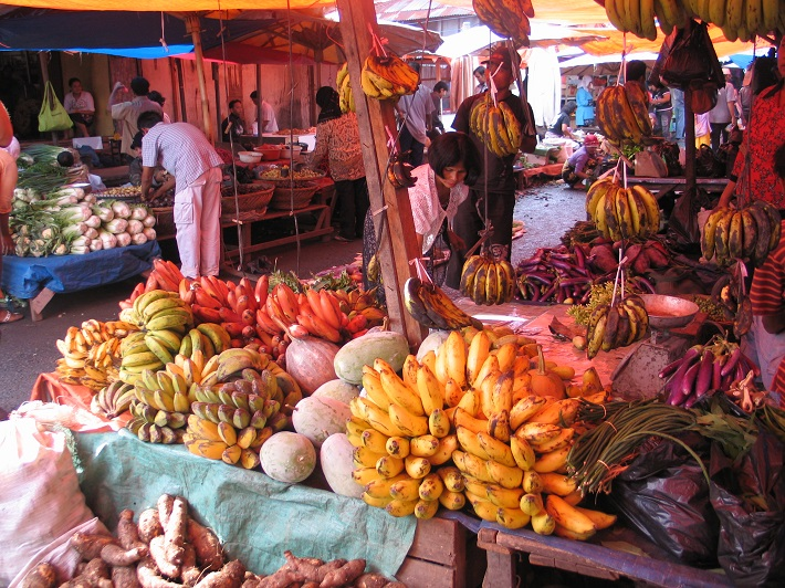 cgiar.org - Our Biodiversity, Our Food, Our Health