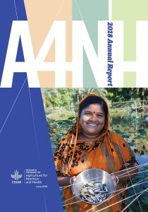 A4NH 2018 annual report cover