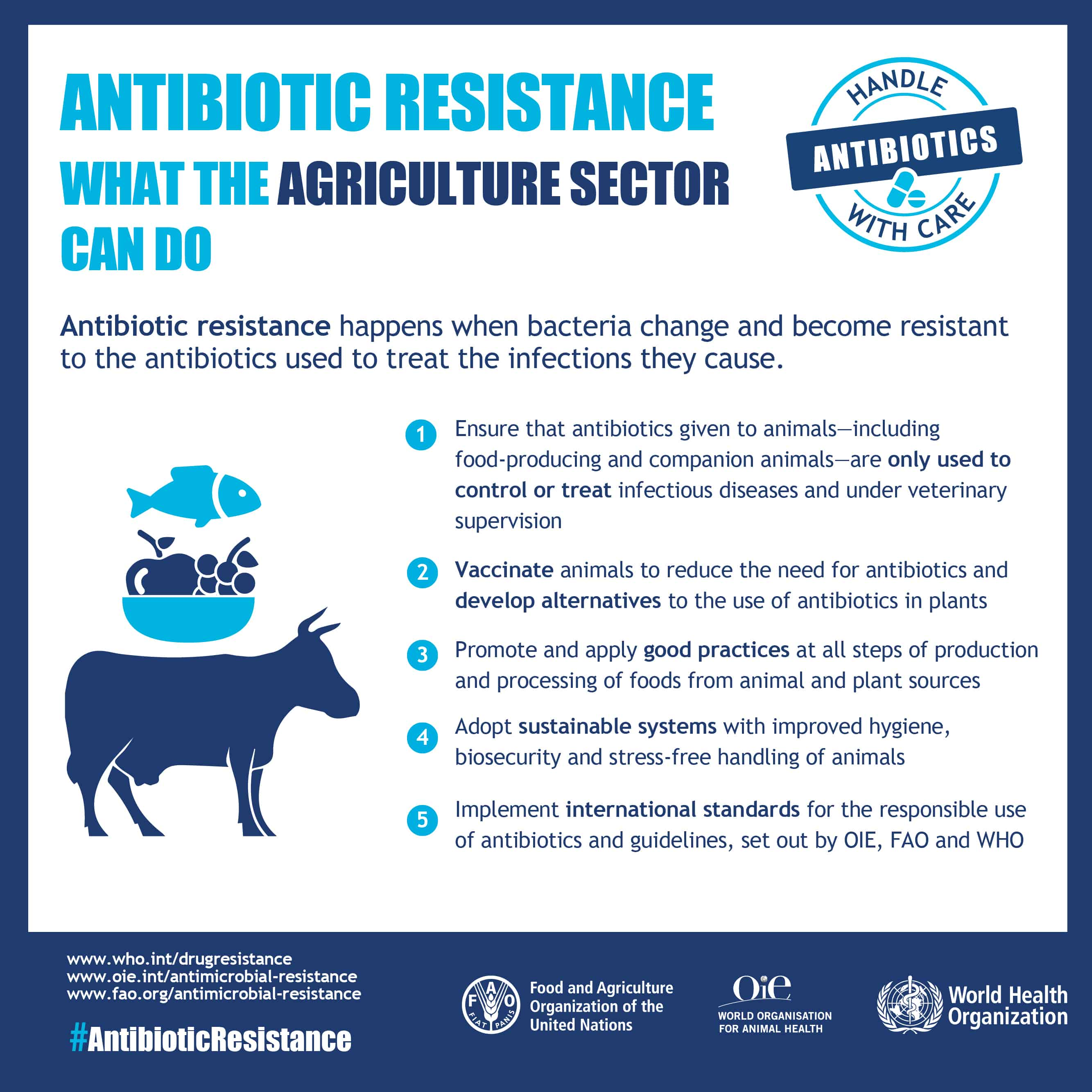 Infographic on antibiotic resistance: what the agriculture sector can do (credit: World Health Organization).