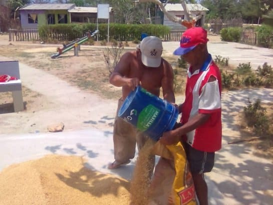 Colombian Farmers Donate Zinc Rice