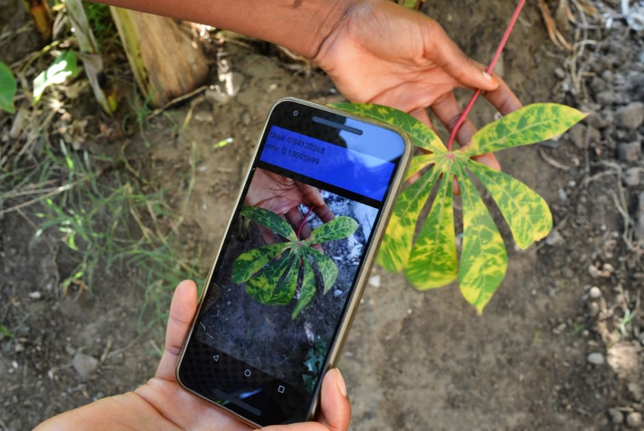 Artificial intelligence: A game-changer for agriculture in Africa