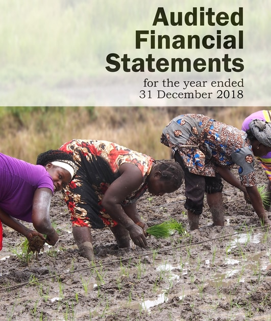 AfricaRice Audited Financial Statements 2018