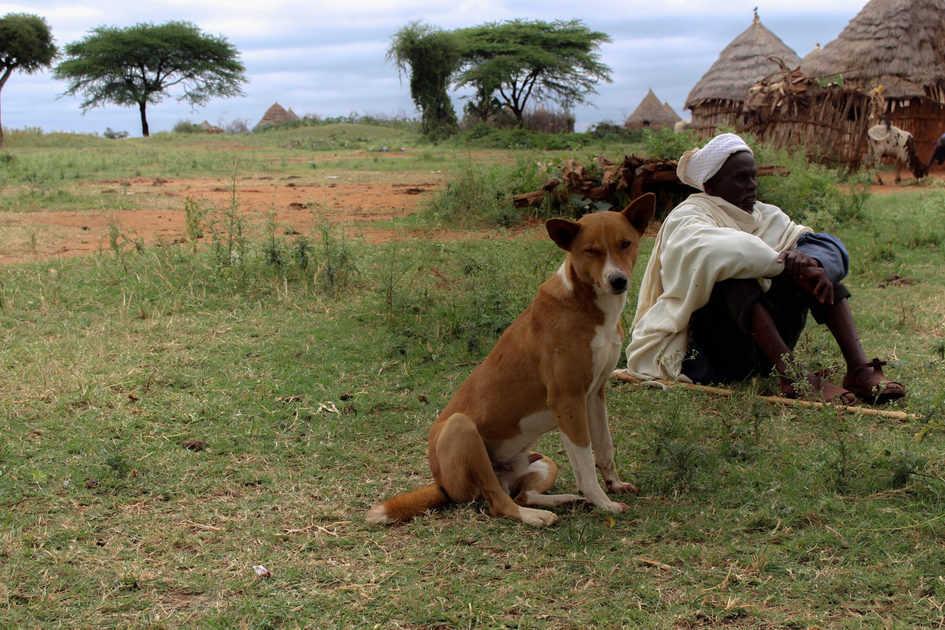 A pastor and his dog, Yabello, Ethiopia, (photo credit: ILRI/ Camille Hanotte).