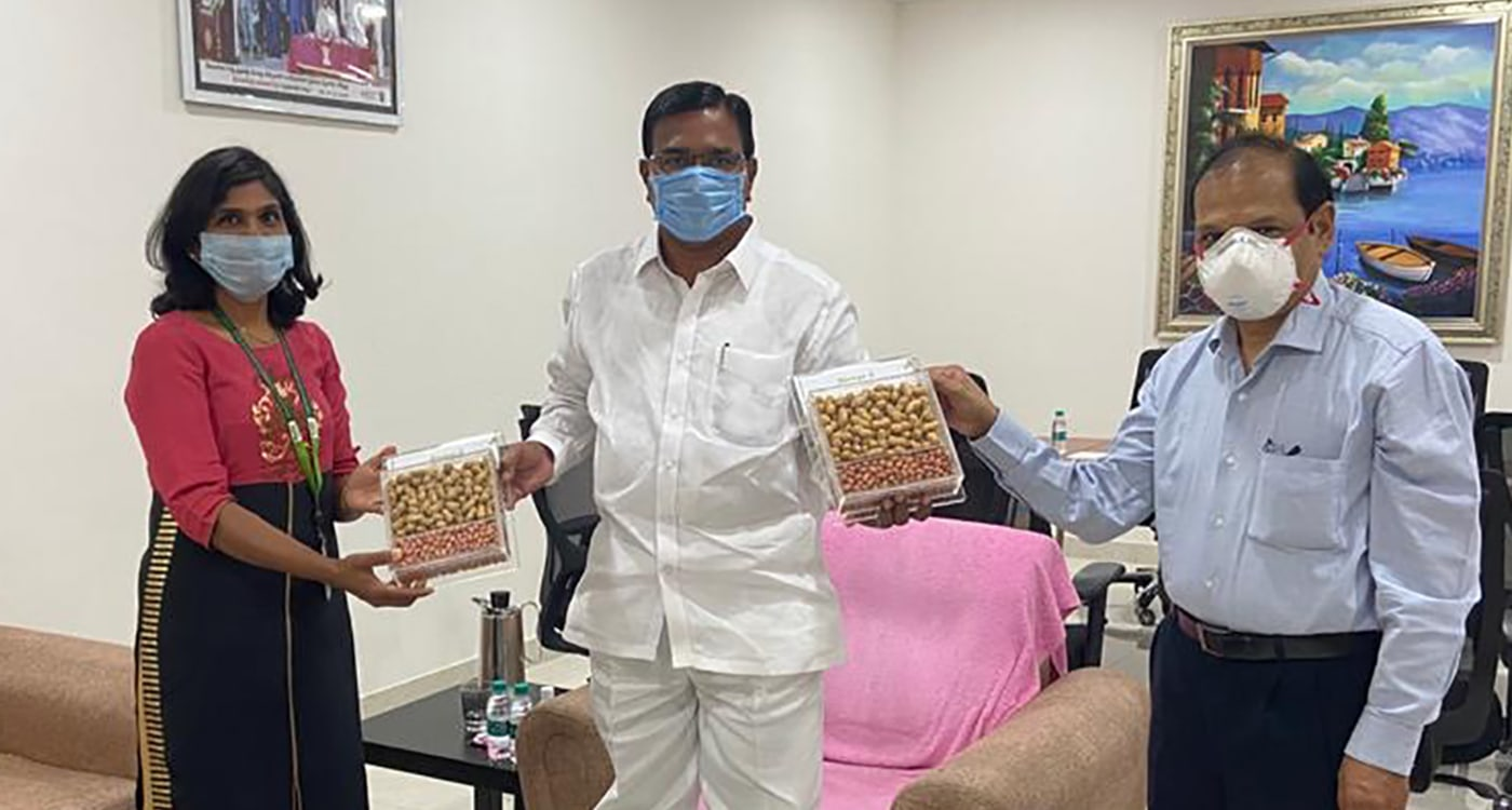 ICRISAT scientists Dr Janila Pasupuleti (L) and Dr Pooran Gaur (R) presenting packs of two new groundnut varieties to the Minister for Agriculture Singireddy Niranjan Reddy (center) in Hyderabad on August 4, 2020. Photo: ICRISAT