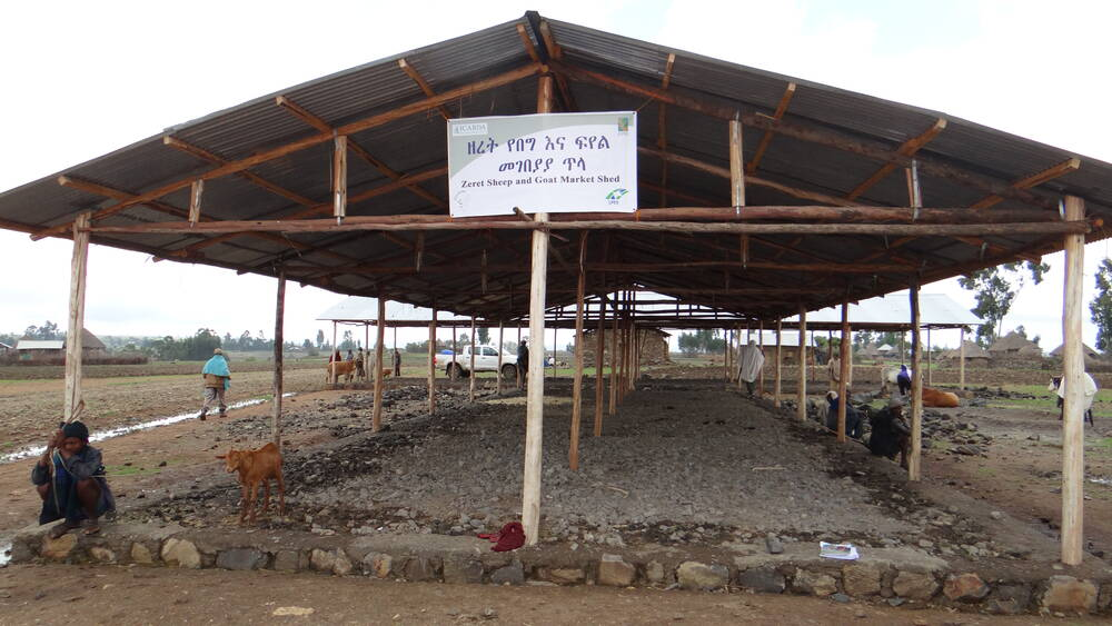 Livestock market shed in Ethiopia