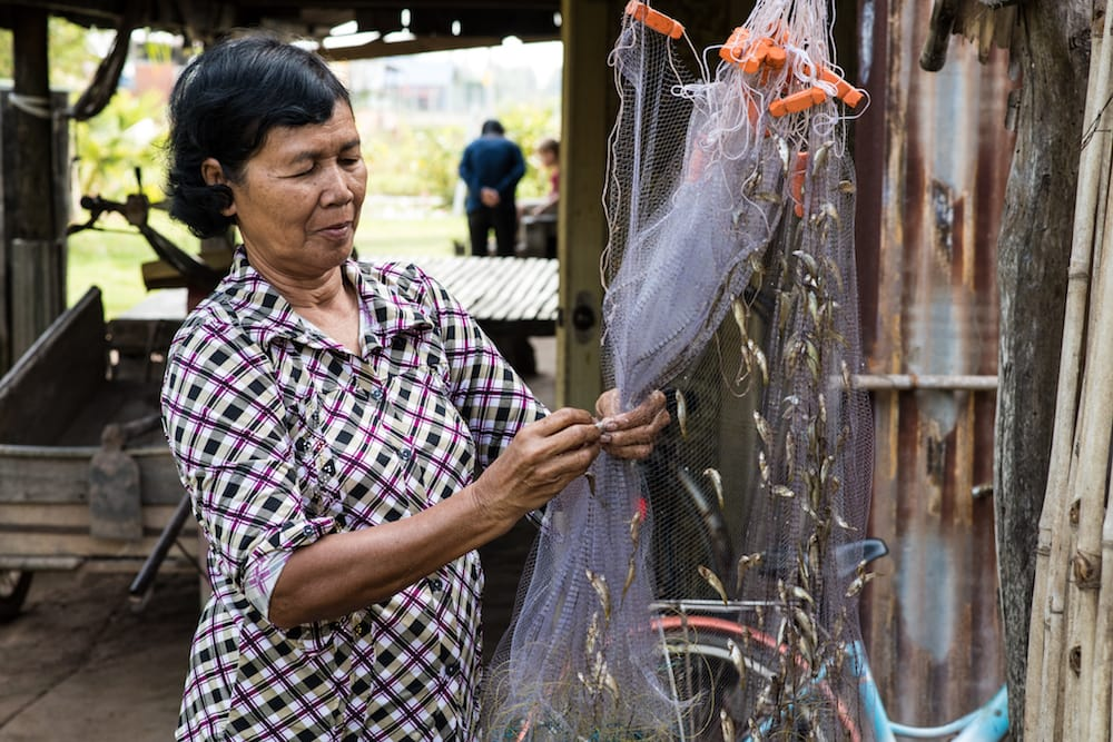 Healthy aquatic food systems for nutrition and livelihoods