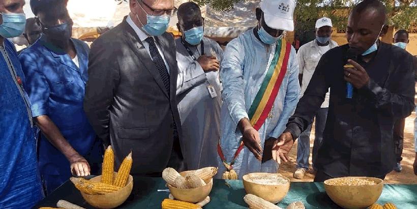 IITA-CSAT scaling activity flourishes; welcomes Norwegian Ambassador to Mali
