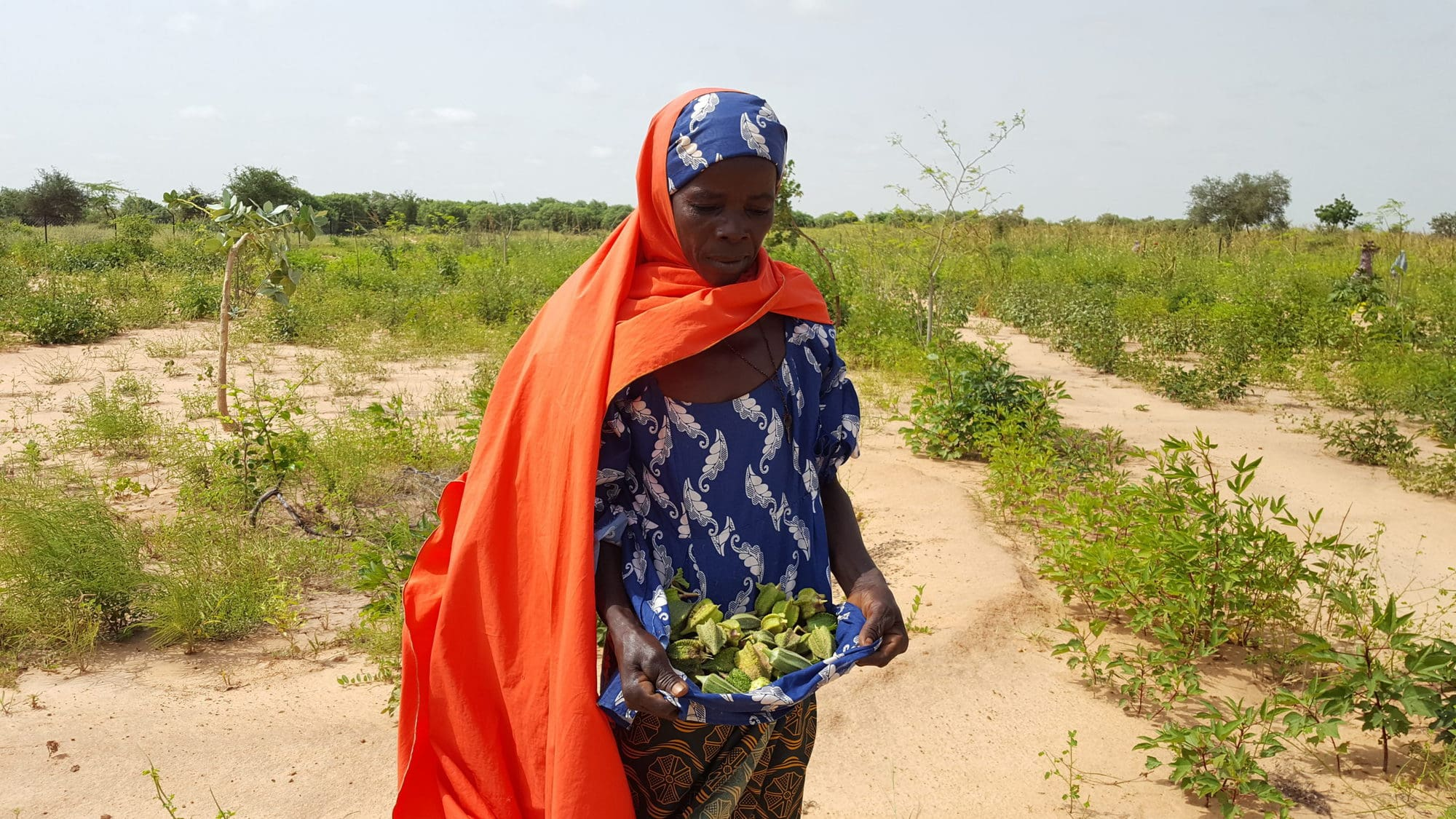 Bioreclamation to secure women's rights to land