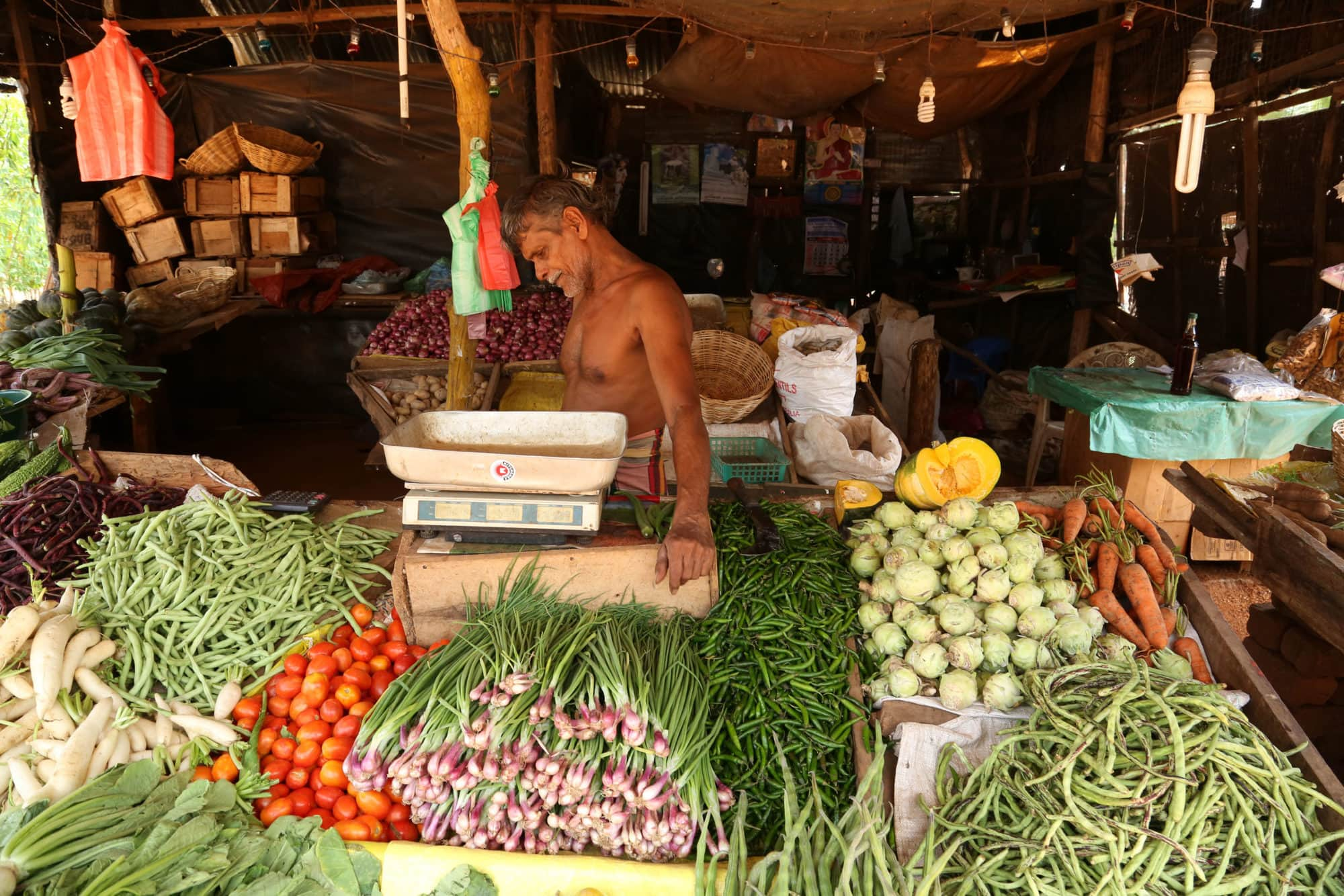 Biodiversity for food and nutrition