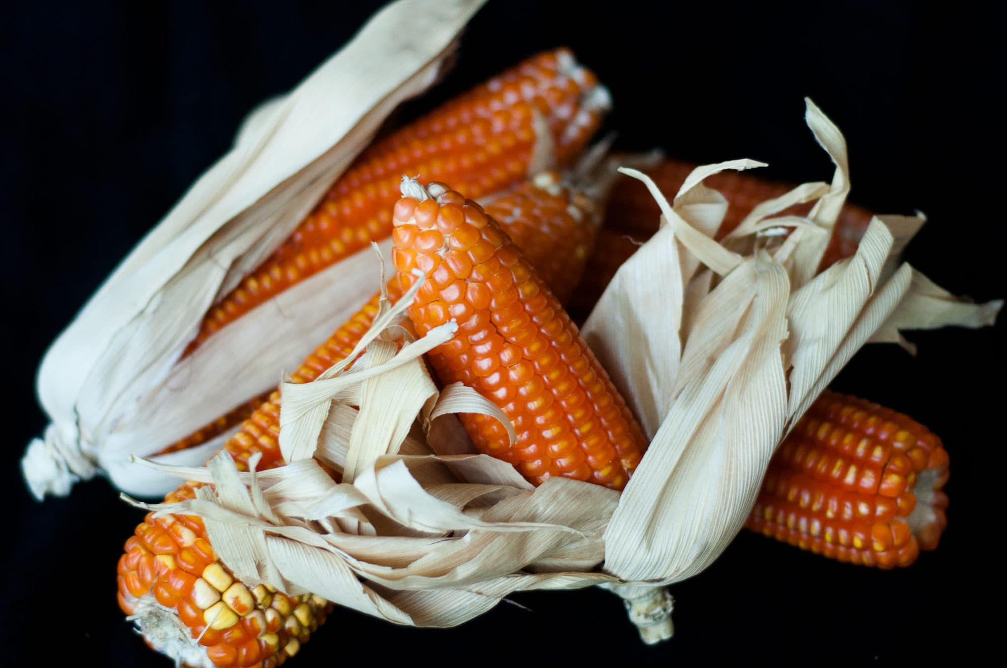 Crops bred to improve nutrition