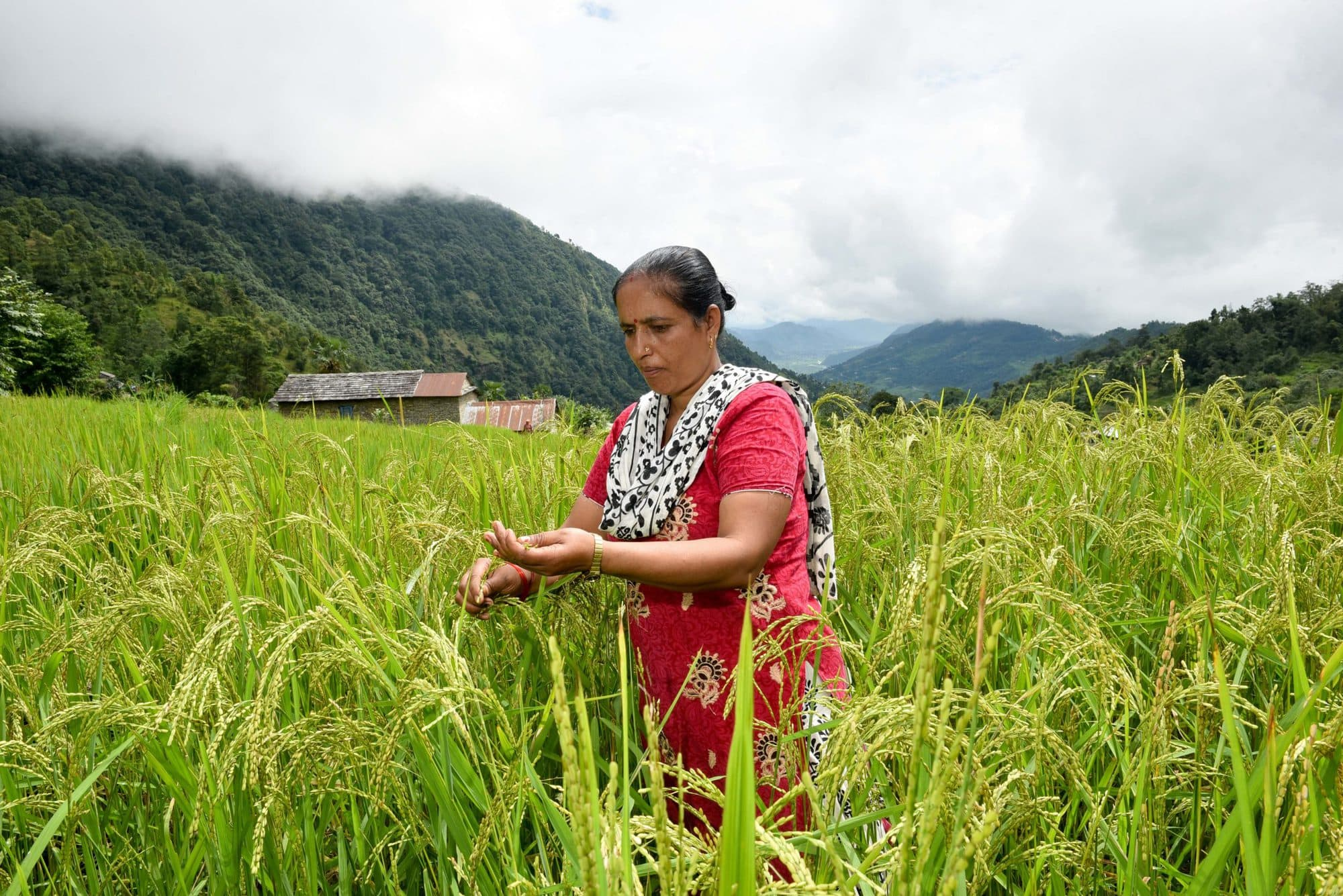 Climate-Smart Villages and Valleys