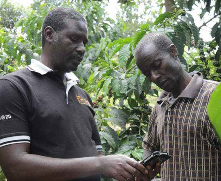 An extension agent showing a farmer how to use the Stepwise Smartphone Application.