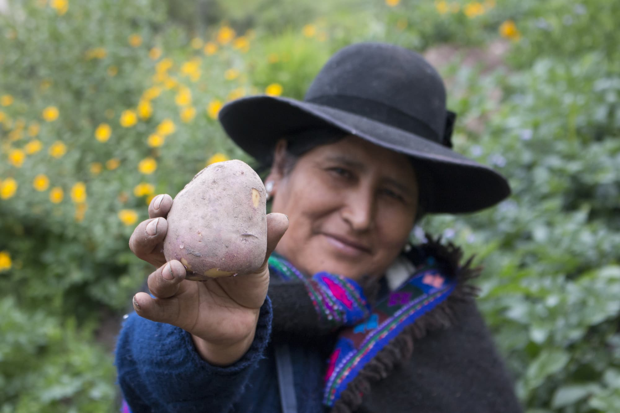 Photo of Peruvian woman