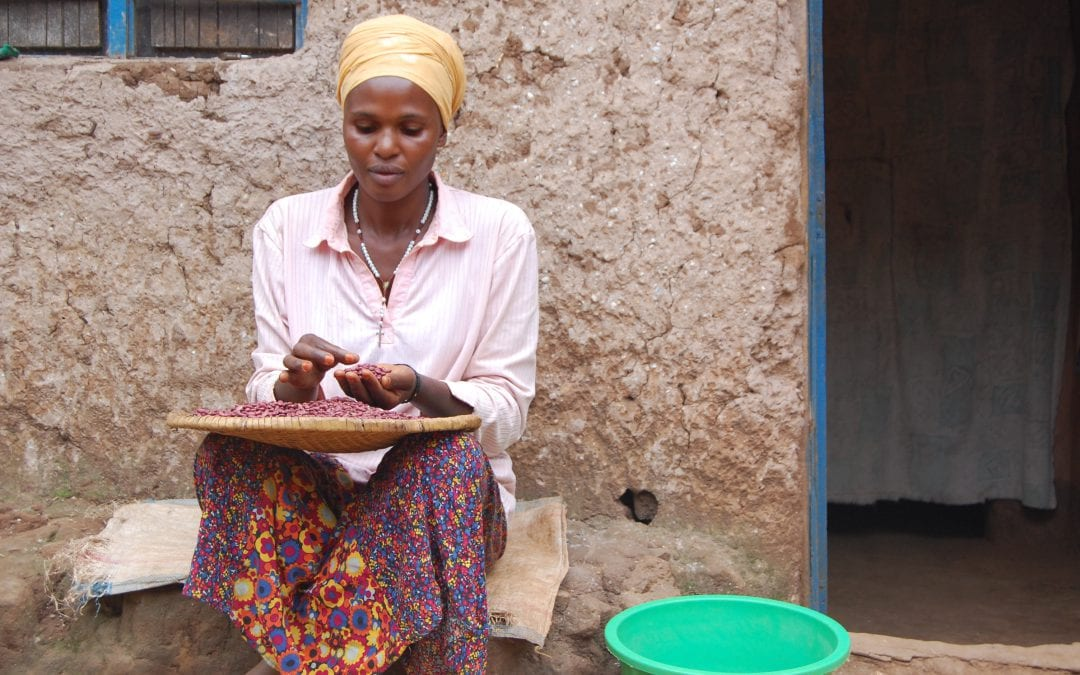 Farmers reaping big benefits from climate information services in Rwanda (PABRA)