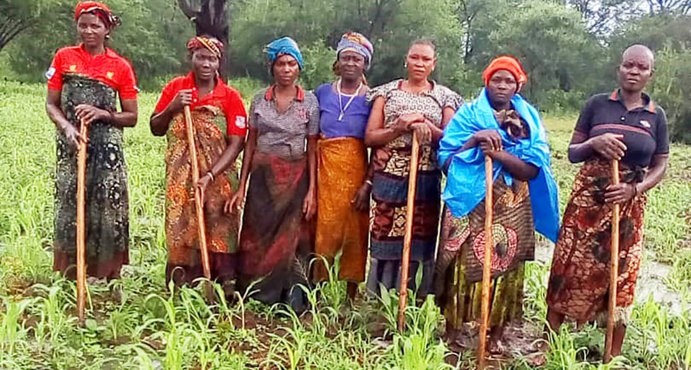 Women seed producers in the sorghum seed farm, Tanzania. Photo: A Mwalughelo, MHEG