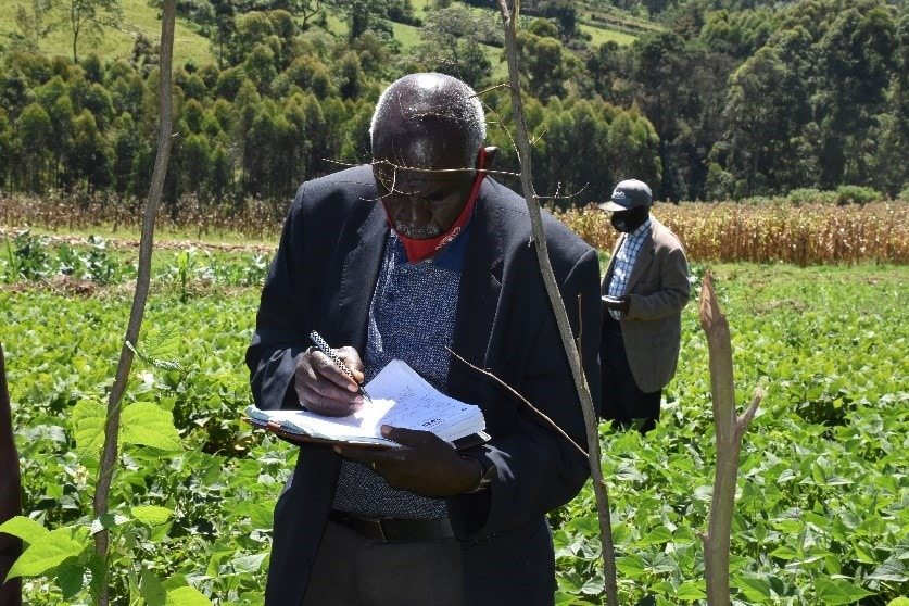 Unlocking the potential of bean production and marketing for improved nutrition and income in Kenya (PABRA)