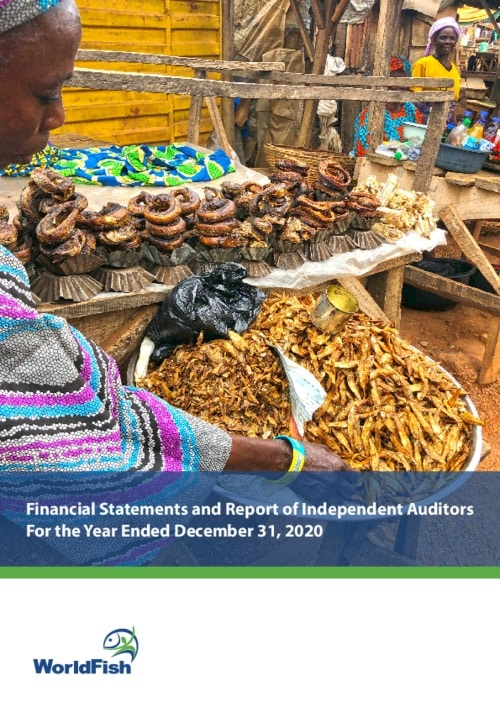 Worldfish Financial Statements and Report of Independent Auditors For the Year Ended December 31, 2020
