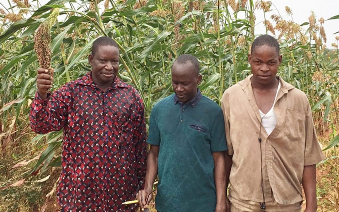 Why youth here aspire to be farmers, the case of Burkina Faso (ICRISAT)
