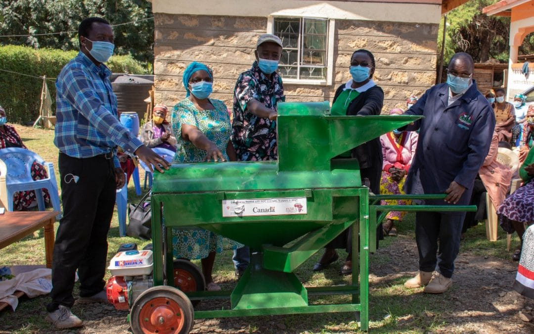 Bean threshers transforming post-harvest and food safety handling in Kenya