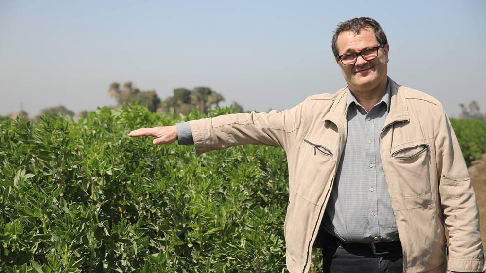 Dr. Michael Baum in faba bean field