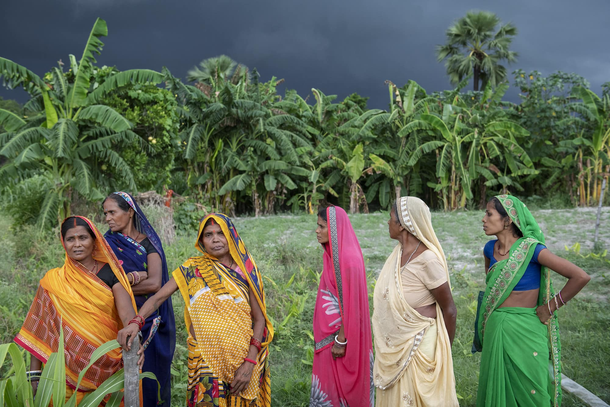 HER+: Harnessing Equality for Resilience in the Agrifood System