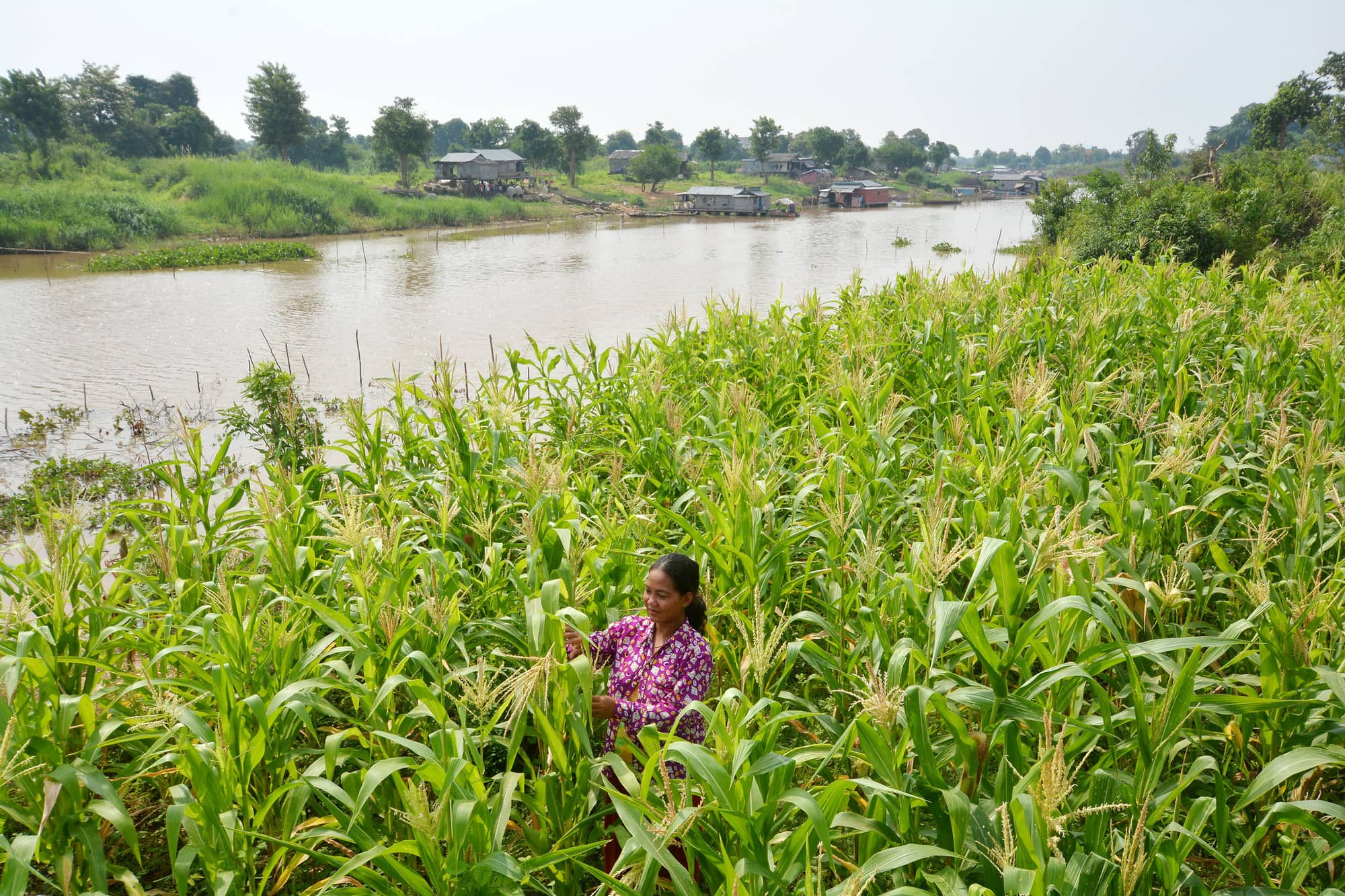 18 Securing the Asian Mega-Deltas from Sea-Level Rise, Flooding, Salinization and Water Insecurity