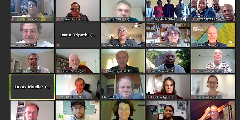 A group photo of the virtual annual meeting of the ABBB project.