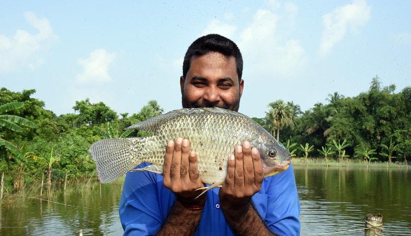A fish farmer poses with his genetically-improved tilapia in Odisha, India. Photo by Arabinda Mahapatra.