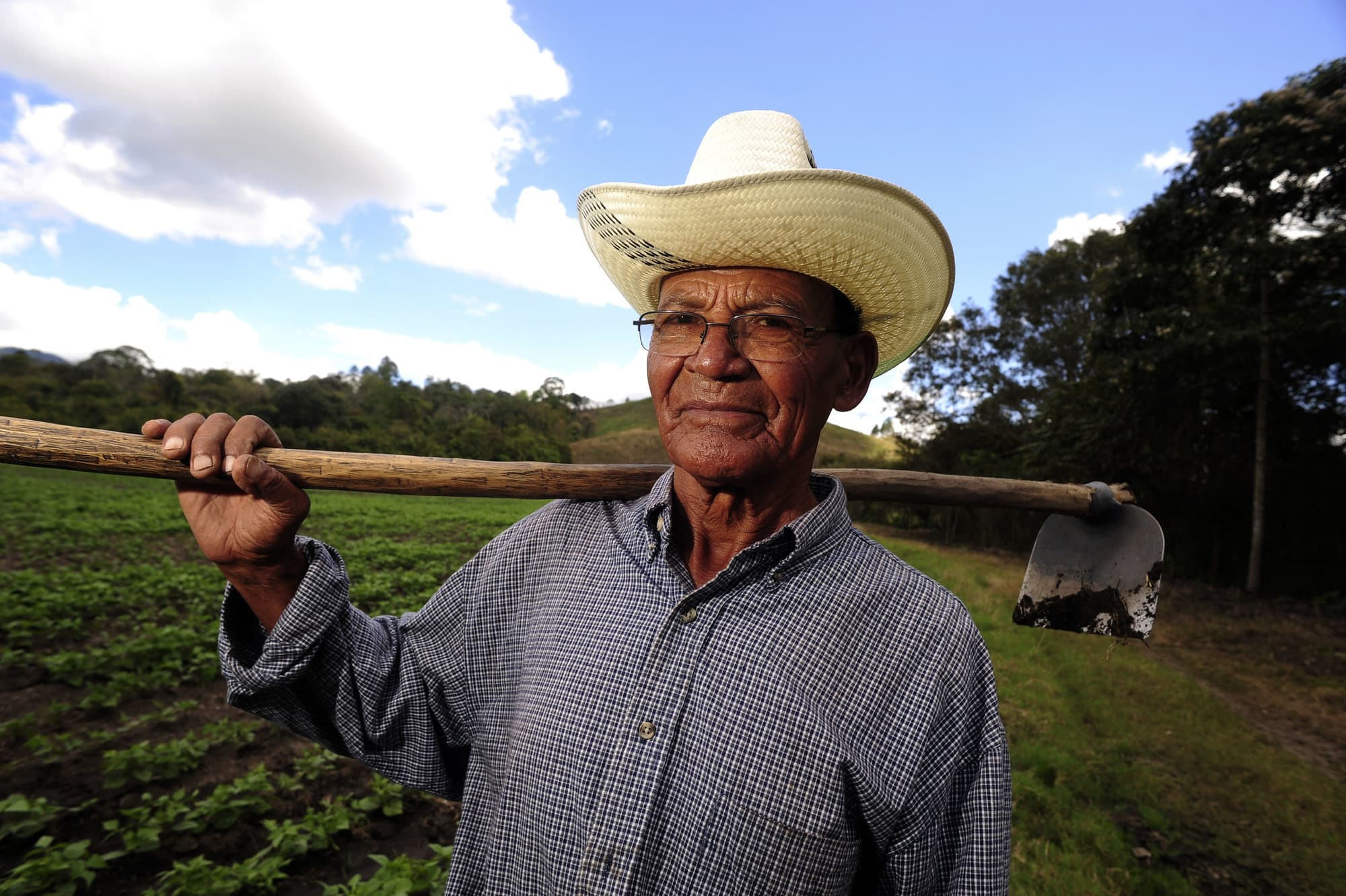 14 Resilient and Sustainable Latin American and Caribbean Agrifood Systems: Driving Global Food Security, Inclusive Growth, and Reduced Out-Migration