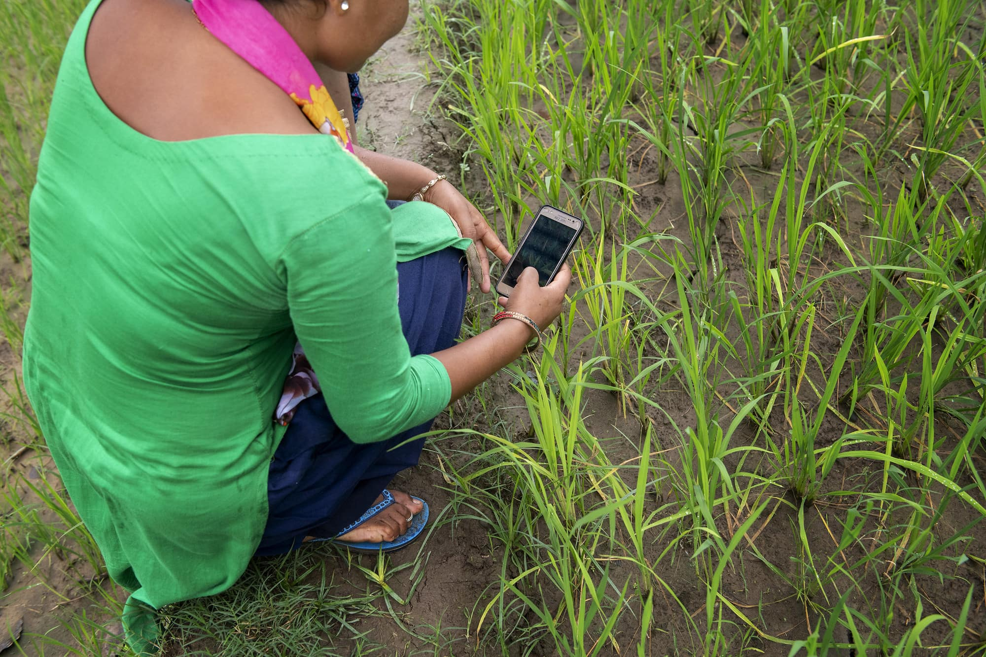 Excellence in Agronomy for Sustainable Intensification and Climate Change Adaptation