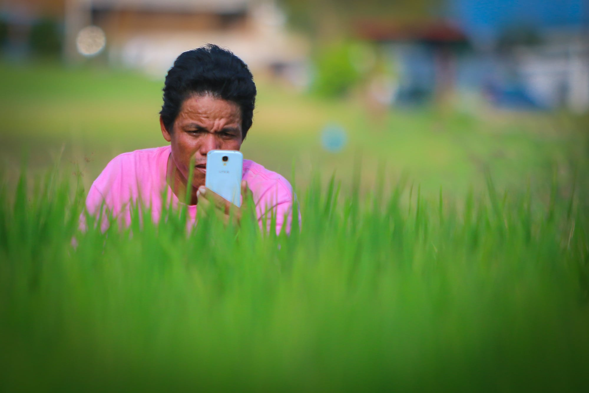 25 Harnessing Digital Technologies for Timely Decision-Making Across Food, Land, and Water Systems
