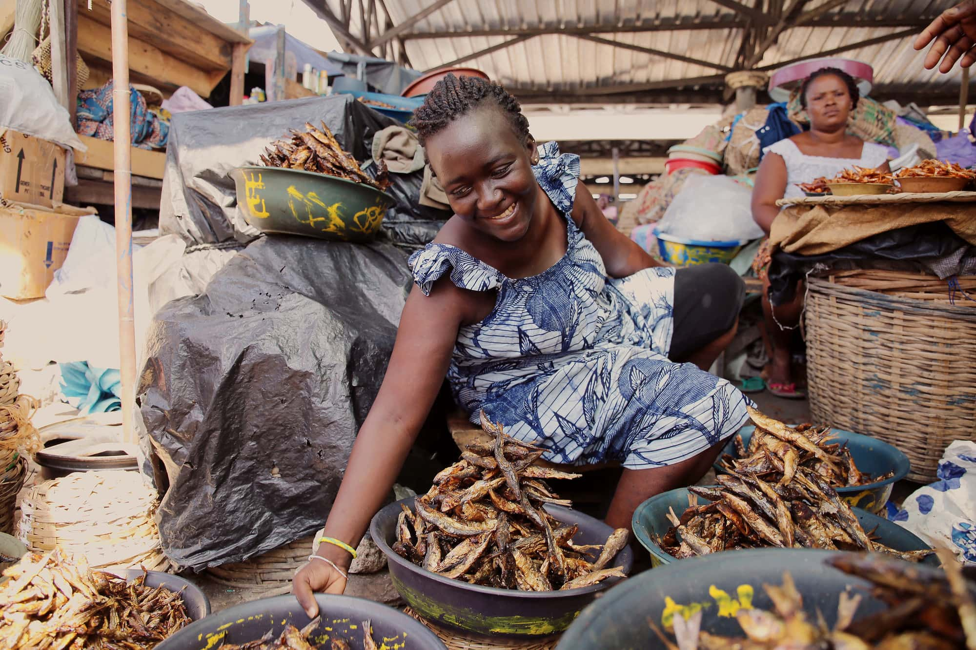 Market-Driven, Resilient, and Nutritious Agrifood Systems in the Humid Zones of West and Central Africa