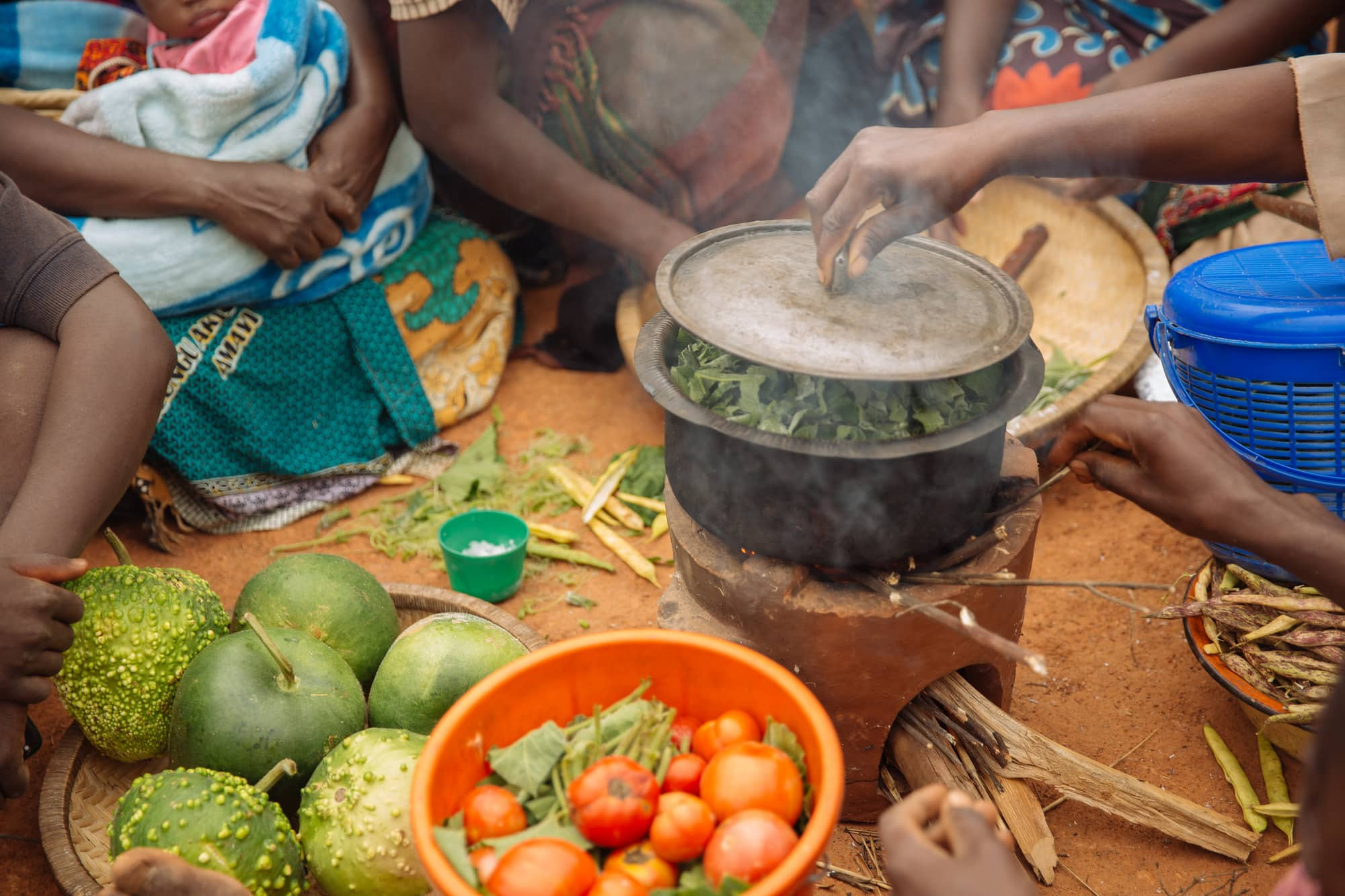 Sustainable Healthy Diets through Food Systems Transformation (SHiFT)