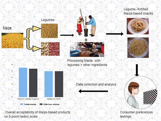 Graphical abstract summarizing the study.