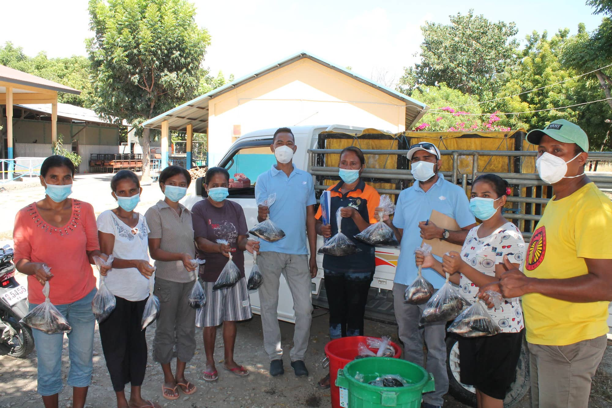Locally-farmed tilapia distributed to flood victims in Dili, Timor-Leste