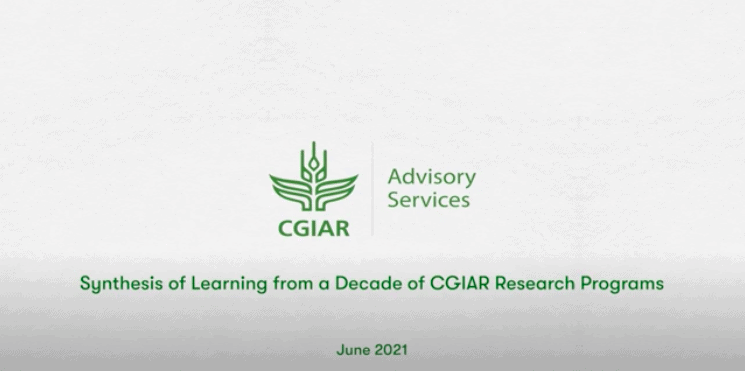 Video: Synthesis of Learning from a Decade of CGIAR Research Programs
