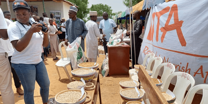 The IITA-Kano Station exhibition showcasing improved seeds.