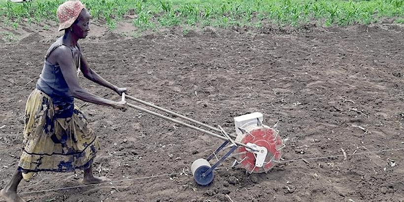 A female farmer using the HPLS to plant Soybean.