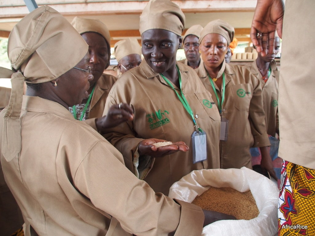 GEM: a safer, cleaner parboiling technology for women