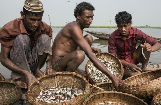 Fishermen in Sunamganj, Bangladesh. Photo by Finn Thilsted.