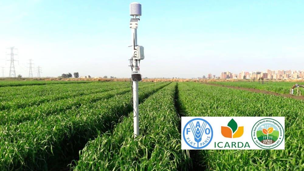 FAO/ICARDA WEBINARS ON MEASURING EVAPOTRANSPIRATION NOW OPEN