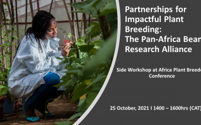 Join the PABRA Parallel session at Africa Plant Breeders Conference 2021