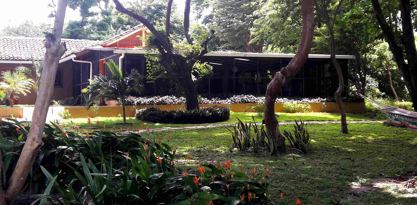 Gardens with hammocks in front of Bar & Restaurant
