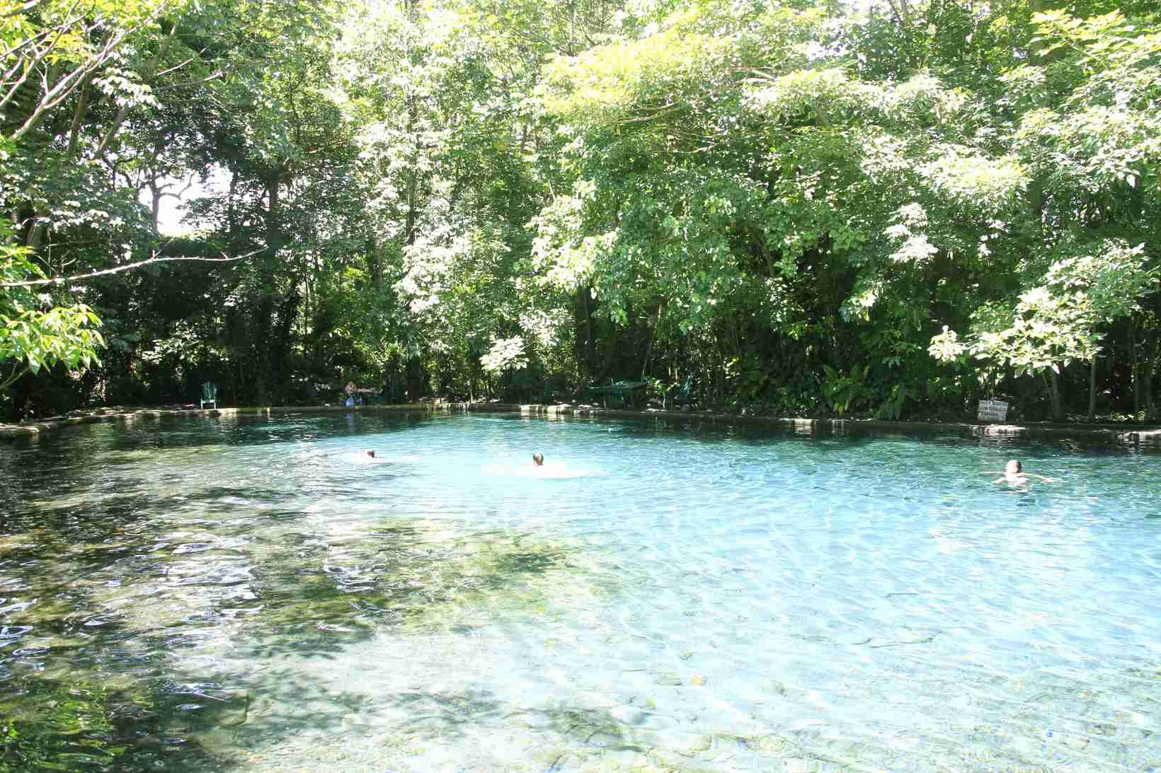 Ojo de agua natural cold spring water pool - 4km from Xalli