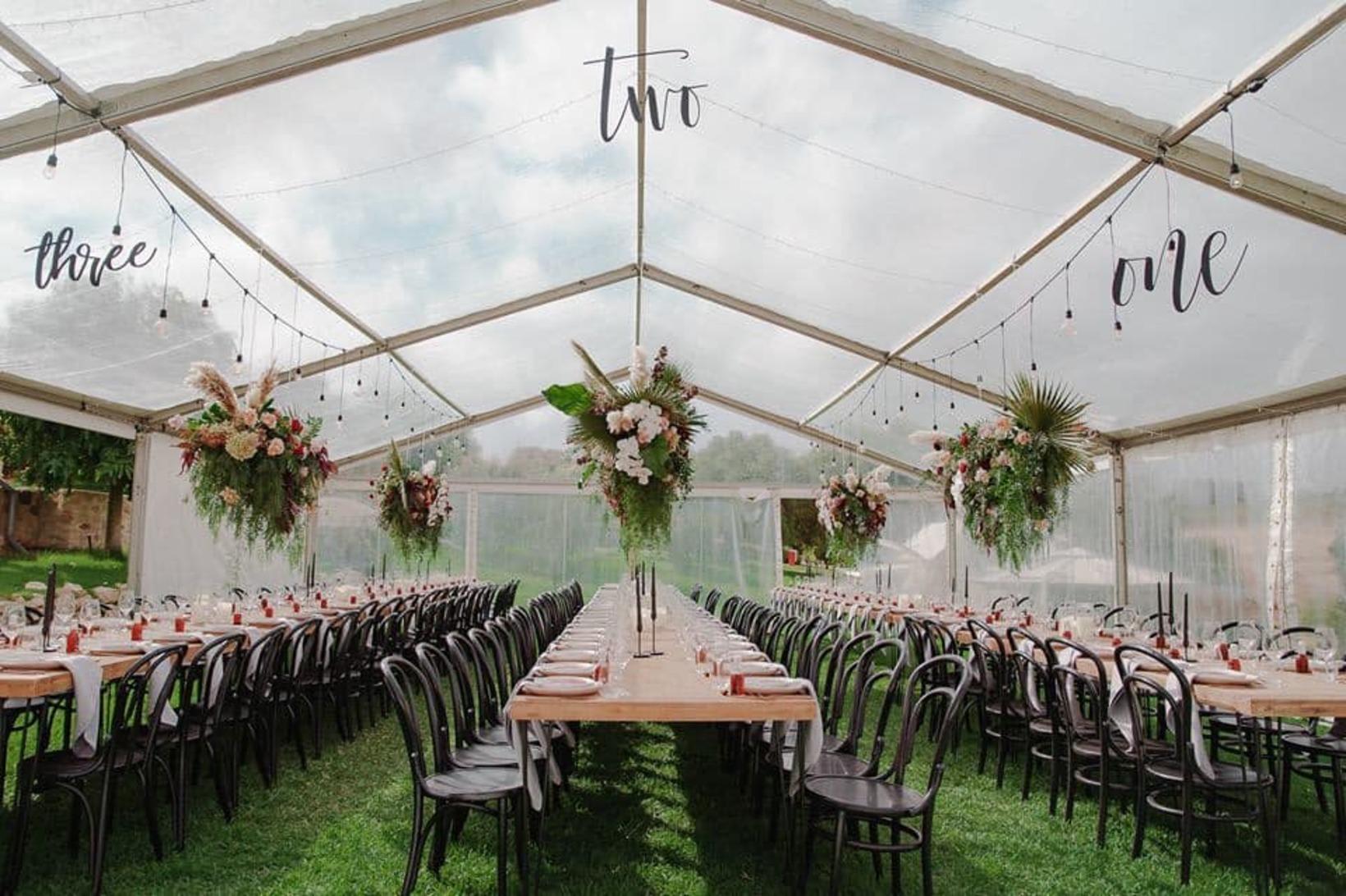 10m x 20m Clear roof pavilion