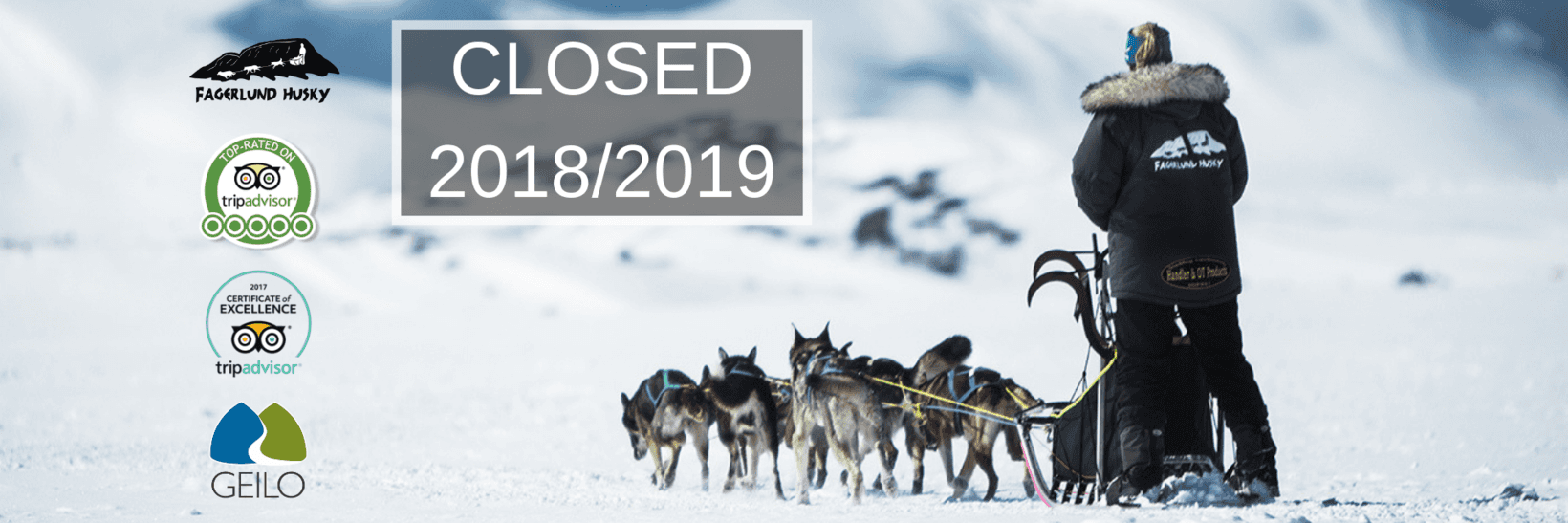 Dog sledding in Geilo - Norway