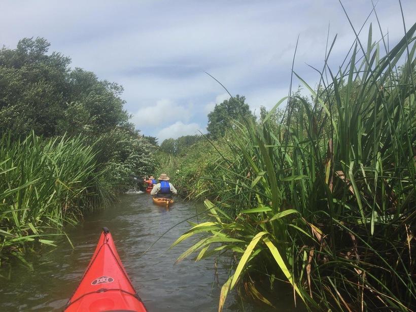 River Arun Hires (Pulborough)